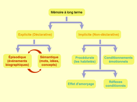 Les différentes catégories de mémoire