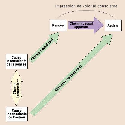 décision et libre arbitre en psychologie