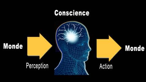 Dissertation Sur La Conscience Philo
